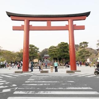 自然豊かな古都・鎌倉へ!移住しました!
