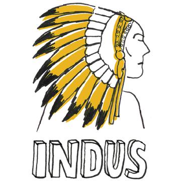 金のインディアン