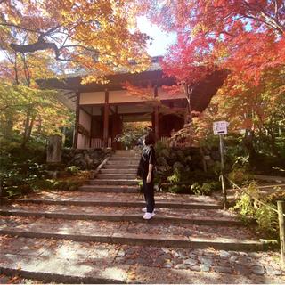 感染症対策しながらGoToトラベルで京都へ