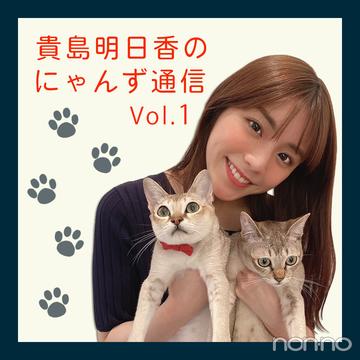 ノンノモデルが愛猫トーク♡ 貴島明日香のにゃんず通信 #01にゃんずとの出会い