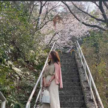 全身UNIQLO「春ベージュ」にくすみピンクでお花見に♫