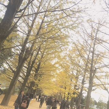 【都内で】秋を堪能!国営昭和記念公園の魅力♡