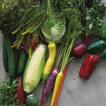 センスあふれる西洋野菜を育てる「アグリアート農園」