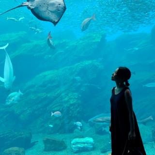 うみの杜水族館