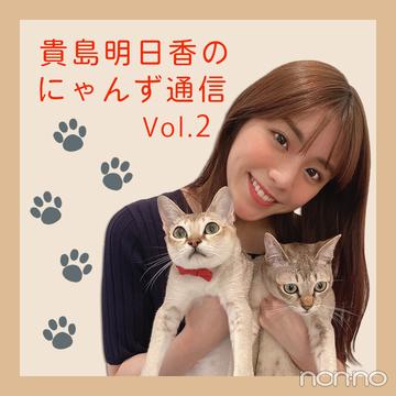 ノンノモデルが愛猫トーク♡ 貴島明日香のにゃんず通信 #02にゃんず自己紹介