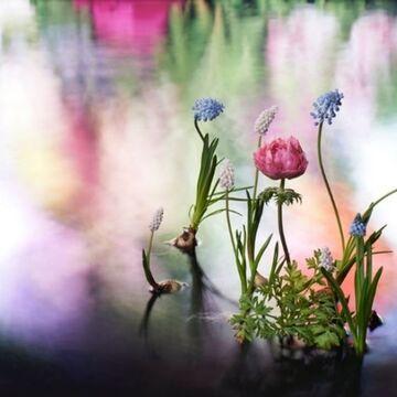 「ヴァン クリーフ&アーペル」花をテーマにした期間限定エキシビションを開催