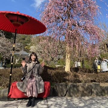 【鎌倉】長谷寺とおしゃれカフェ