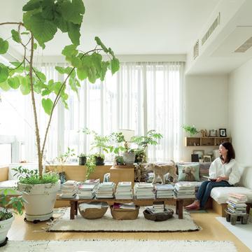 日々の生活を心地よく過ごすための室内グリーンの飾り方 五選