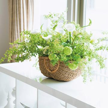 心華やぐ美しい花や緑!梅雨の季節は室内に緑豊かな庭を作ろう【Jマダム通信】