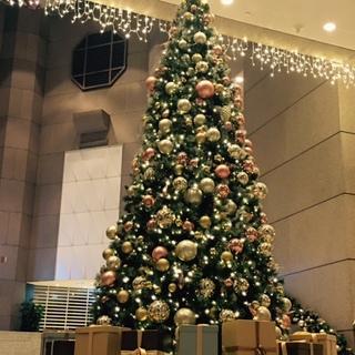 香港もクリスマス一色♪