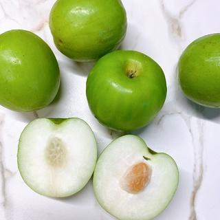 ★2021春節★台湾のラッキーフルーツ【生ナツメ】を食べてみた