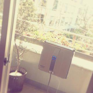 窓拭きロボットなんてものがあったとは!拭いてる姿がなんだか地味に可愛い「winbot」
