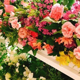 ゲラン「アクア・アレゴリア」新作と復刻の香りNEW IN!_1_1-2