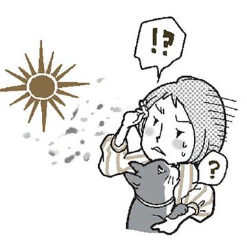 飛蚊症(ひぶんしょう)
