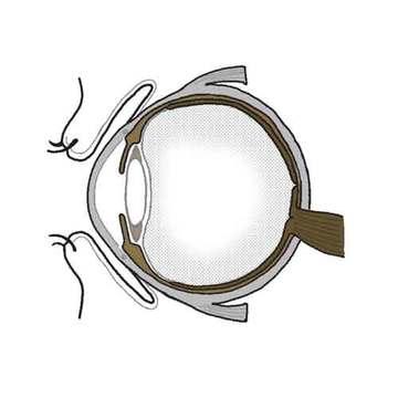 【老眼だけじゃない。こんな自覚症状があったら要注意!】