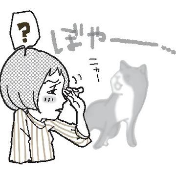 6.白内障