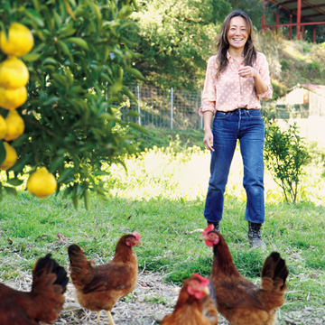 レモンや小夏、放し飼い卵を販売する自然の農園『いちえん農場』【有元葉子、美味しいものは高知にあり】