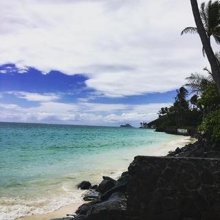 弾丸ハワイの旅。効率よく回るオアフ島②_1_1-1
