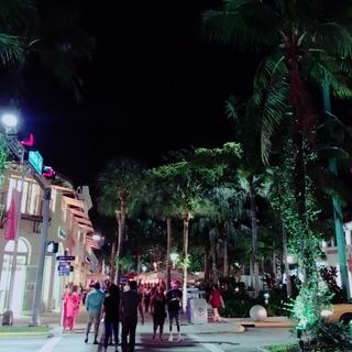 マイアミの風景。_1_8