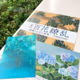 【美術館めぐり】広尾の山種美術館で日本画のアジサイ
