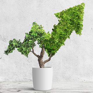 株式投資初心者が絶対知っておくべき心得って?【アラフォーのためのマネーのお話 #6】