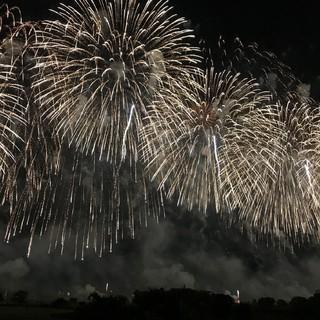 夏の風物詩といえば花火!地元長岡の花火を満喫してきました♡
