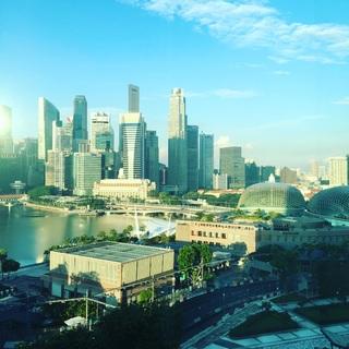 弾丸旅の最新スタイル 憧れのシンガポール2泊4日 day2_1_3-3