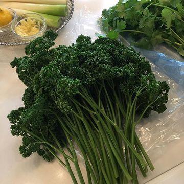 夏は香味野菜をとり入れて