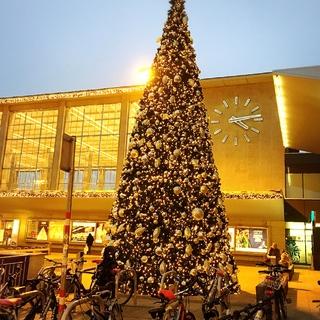 今年はホワイトクリスマスかもしれません?!