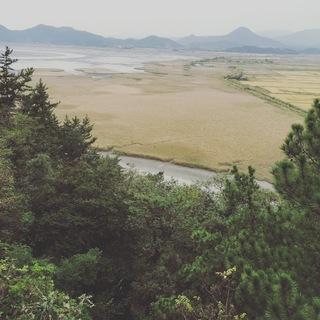 【全羅南道】韓国、釜山からソウルへ 美味と美容の癒され縦断旅!②_1_3-1