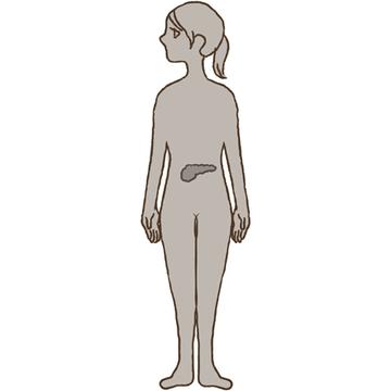 高血糖の原因と対策を専門医が解説!【アラウンド50からの血糖コントロール】