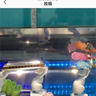 Tiffanyの青い世界♡_1_16