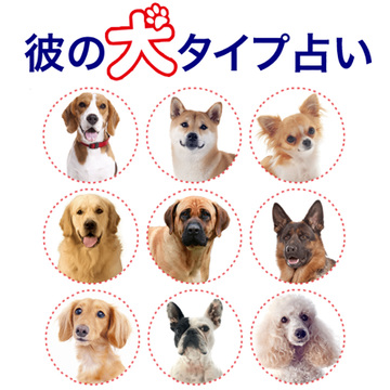 【募集】「彼の犬タイプ占い」に、愛するワンコ♡の画像を掲載しませんか?