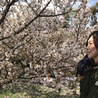 京都 仁和寺。低気温な日のお花見はパーカーが大活躍!