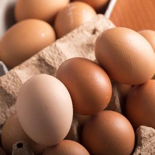④完全栄養食「卵」を 上手にとれ