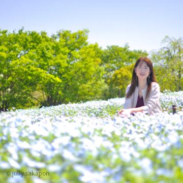 【番外編】ほろほろと藤香り ネモフィラの青に包まれて@昭和記念公園