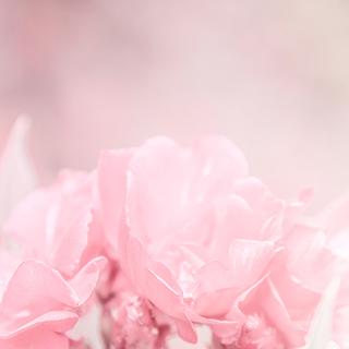 歯を食いしばっての必死感・悲壮感→罪悪感とかいうのは、きっと…【小説・じゃない側の女 番外編~汗が止まらない側の女 Vol.10】