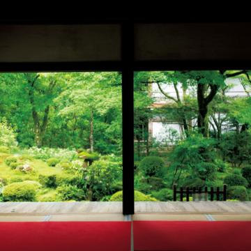 洛北大原の地に静かにたたずむ門跡寺院「三千院」【皇室ゆかりの社寺】