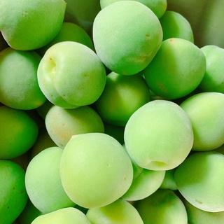 【アンジェの暮らしの整え】梅雨〜夏にかけて、保存食作りを楽しむ!