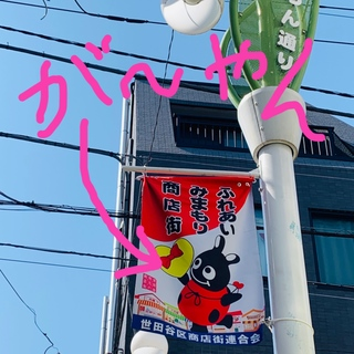 """一足早く満開の桜と花見酒が楽しめる""""映え""""イベント!_1_13"""