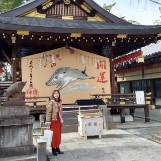 【京都おすすめスポット】亥年の参拝にぴったりの神社