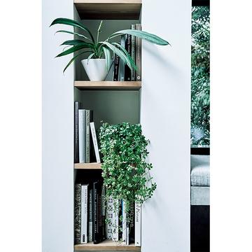 【グリーンを洗練させるアイデア】部屋と心に広がりが生まれる!グリーンインテリア術