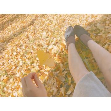 【都内で】秋を堪能!国営昭和記念公園の魅力♡_1_2