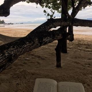タイの隠れビーチリゾート『クラビ』へ *過ごし方編*_1_1-3