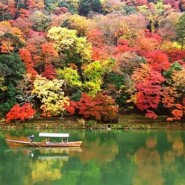 50代のお出かけ① 遠出が気持ちいい秋。行きたいのはやっぱり…!