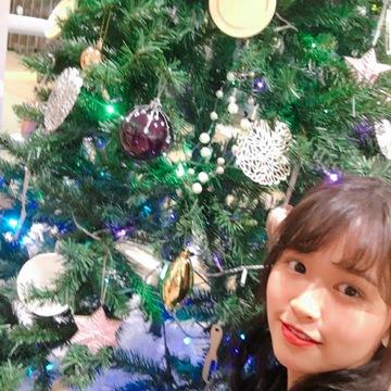 クリスマスツリーはニトリの製品で作ろう!