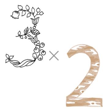 3×2 (パートナーと過す年)