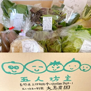 【お取り寄せ有機野菜】信州中川村の五人坊主に感動!