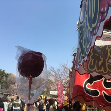 \春うらら上野!屋台と夜桜の注意点/