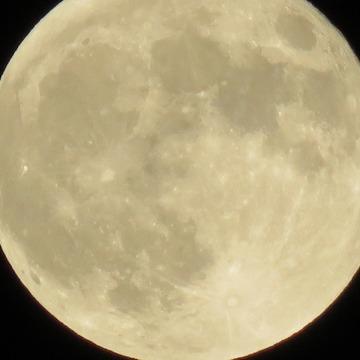 中秋の名月、満月を見上げる。